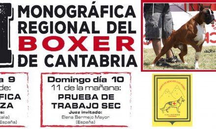 XII MONOGRÁFICA REGIONAL DEL BOXER DE CANTABRIA